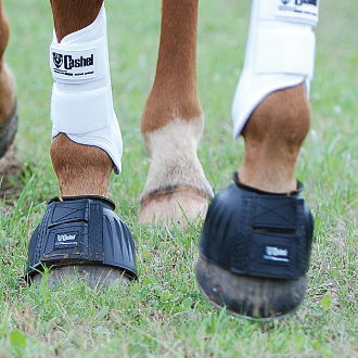 horse bell boots, horse bell boots for sale, bell boots, horse rubber boots, horse rubber bell boots, bell boots for horses, cashel bell boots, bell boots for horses, bell boots horse,
