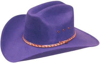 purple cowboy hat, purple western hats, purple felt cowboy hat, purple cowboy hats, cowboy hat, western hat, western hat, purple wool cowboy hat, western cowboy hat, cowboy hat, wool hats