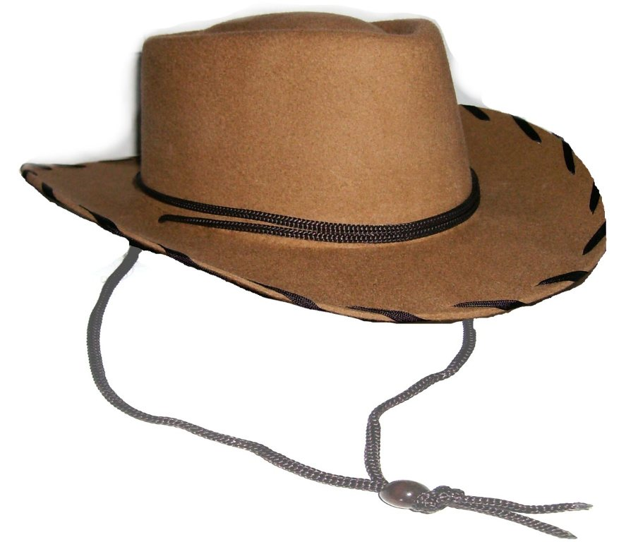 7a7305459 Child Brown Wool Woody cowboy hat