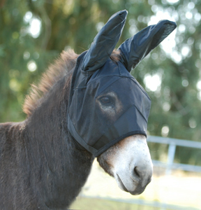 The Cashel Quiet Ride Standard Mule fly mask with Ears for fly protection when riding your horse with covering the eyes and ears while you ride and protect against bugs.